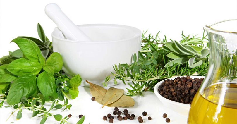 Proper Cultivation and Manufacture of  Supplement Ingredients
