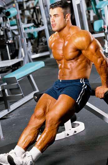 preview-full-005 Triceps BENCH DIP