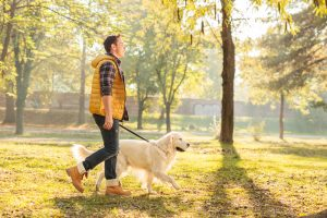 Progentra user walking dog in the park